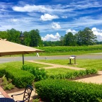 My love of New Kent Winery