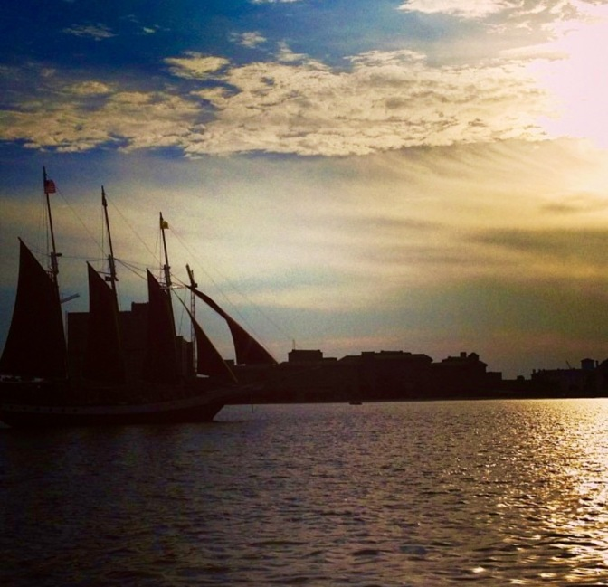 Harbor 9