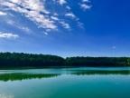 My Love of Hoffler Creek Wildlife Preserve