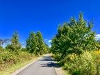 My Love of the Suffolk Seaboard Coastline Trail